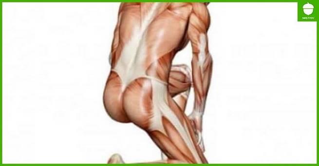 Средняя ягодичная мышца: полезные упражнения