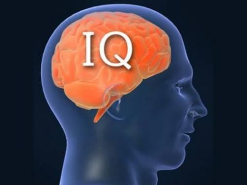 Только 3 женщины из 100 проходят этот сложный IQ-тест!