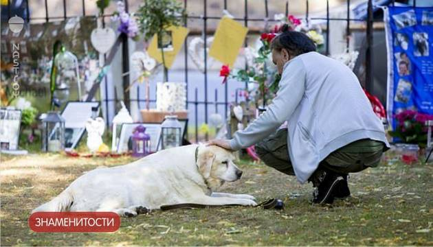Собака Джорджа Майкла каждый день приходит к нему на могилу — фото!