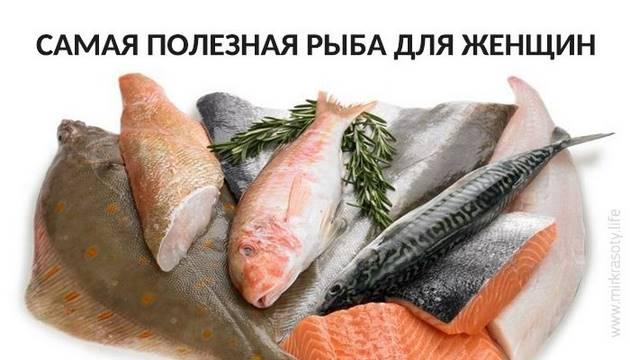 Полезные рыбы увеличение член