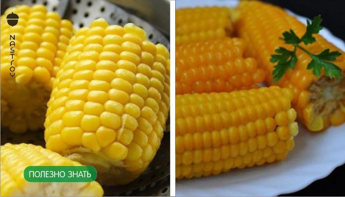 6 причин, чтобы не есть кукурузу