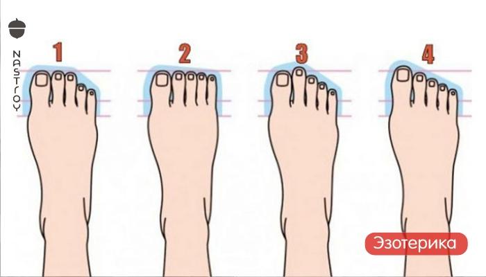 Вот что говорит о вашей личности ваша форма ноги!