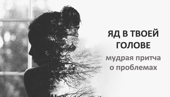 Яд в твоей голове