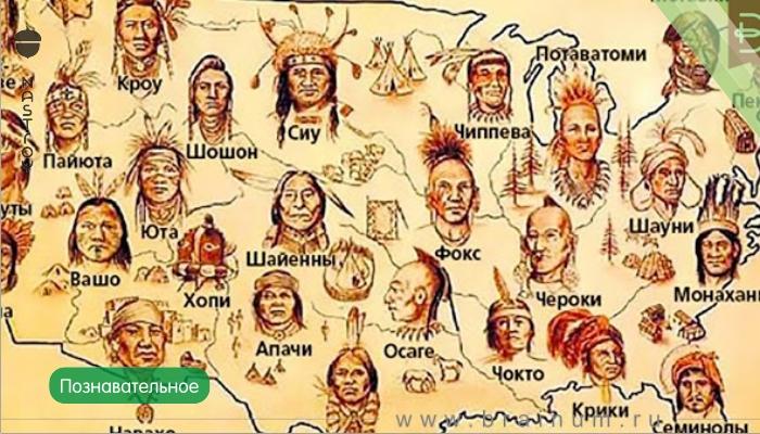 Как американцы и канадцы убивали индейцев...