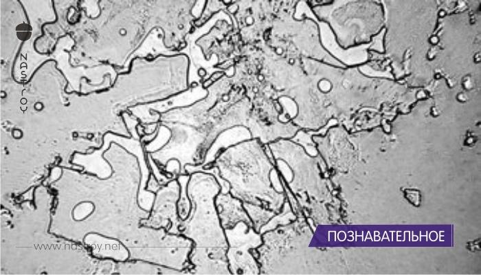 В это трудно поверить: так выглядят слезы под микроскопом!