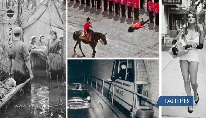 История в кадре: неизбитые фотосвидетельства прошлого