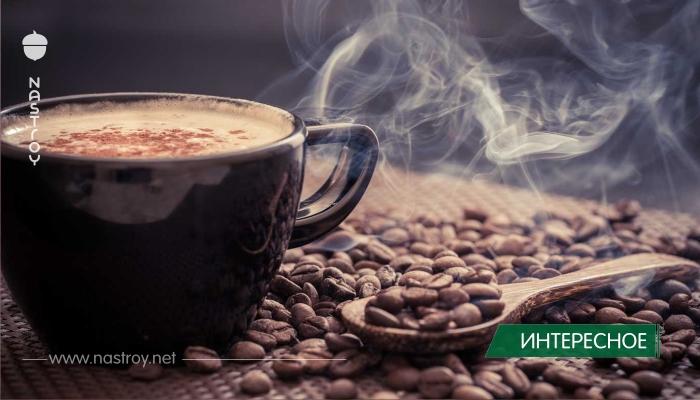 Как выглядит чашка кофе в разных странах мира!