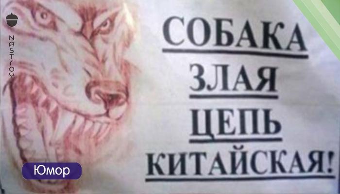 20 объявлений, мимo которых невозможно пройти мимо!!!