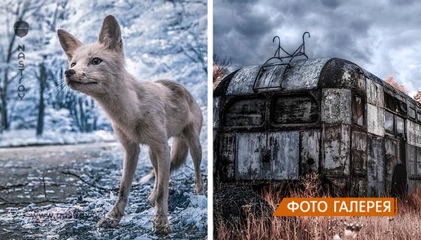 15 невероятных снимков Чернобыля. Это потрясающе!