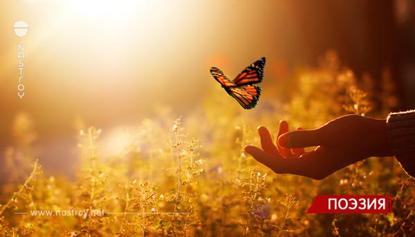 Красивое стихотворение: Сегодня Бог проснулся на рассвете