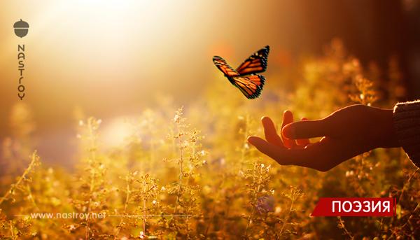 Нереально Красивое стихотворение: «Сегодня Бог проснулся на рассвете…