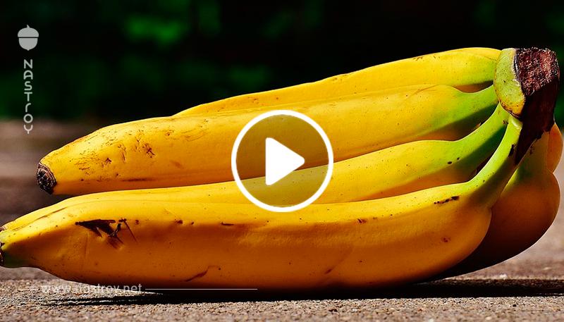 Съел банан - и заразился ВИЧ! Что это - новый вид терроризма?