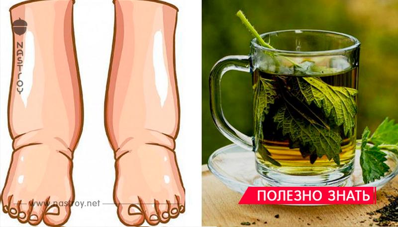 Невероятно! Что происходит с вашим телом, когда вы пьете чай из петрушки с лимоном и медом!