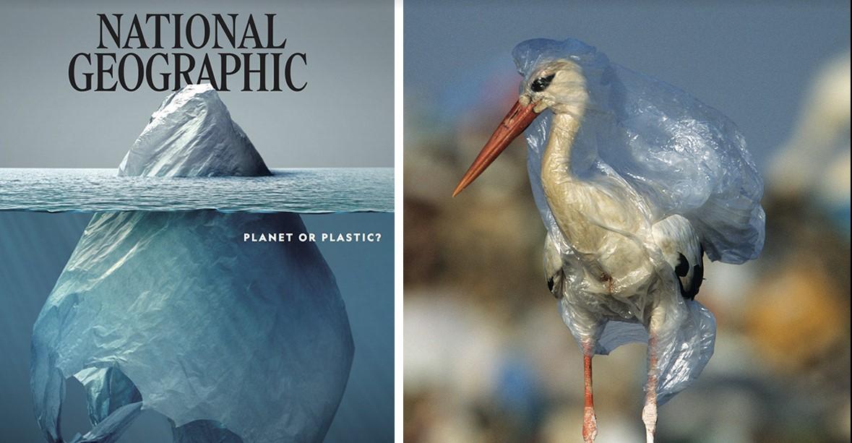 National Geographic показал, что с нашей планетой делает пластик. Содрогнулся весь мир!.. Это должен увидеть каждый!