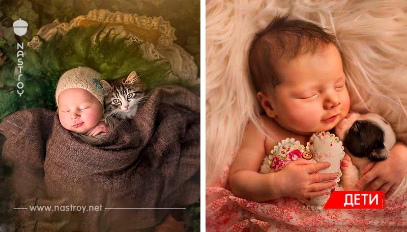 Когда милее некуда: объятия новорожденных и питомцев в проекте фотографа из Лондона!
