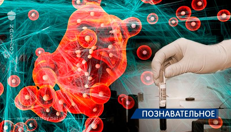 Как искусственный интеллект защищает нас от рака!