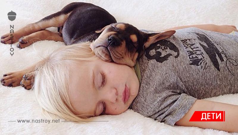 Тео и Бо – самые милые сони на свете!