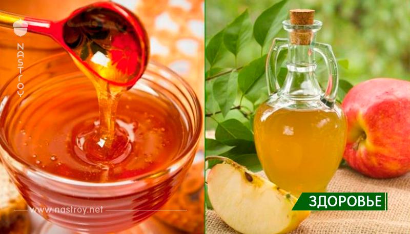 Настойка яблочный уксус мед и чеснок: польза и вред, что лечит, курс лечения, как готовить и принимать!