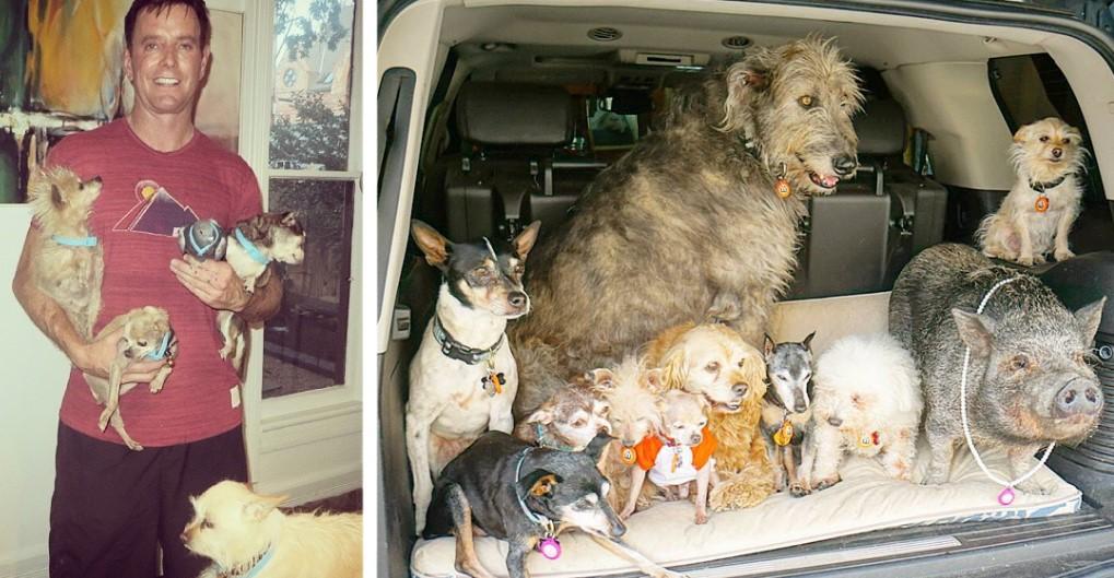 Этот мужчина всю жизнь забирает из приютов пожилых собак, которые не могут найти себе новый дом!
