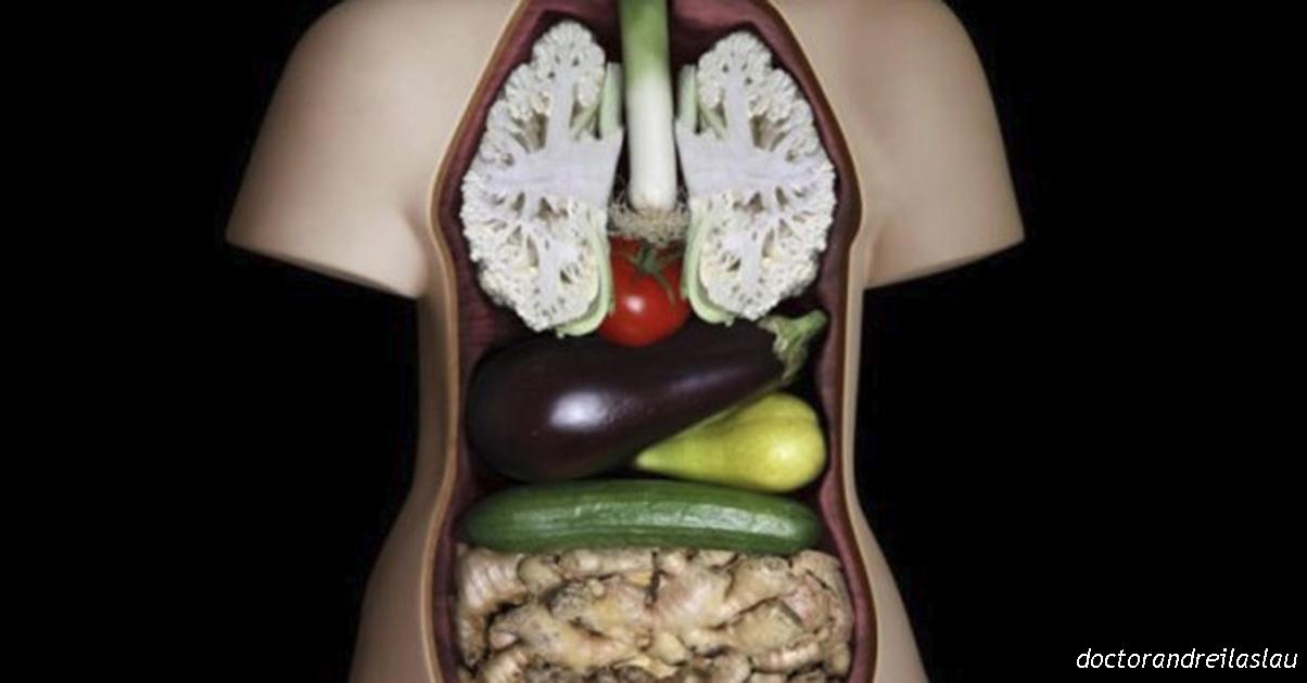 17 Продуктов которые имеют невероятные свойства на наш организм!