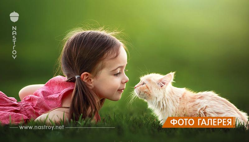 Фотограф из США создает снимки своей дочери с разными животными.