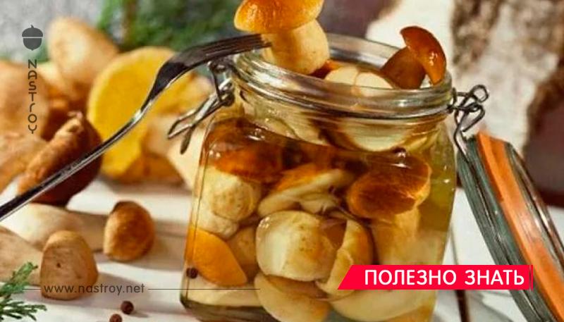 Невероятно вкусный Маринад для любых грибов!