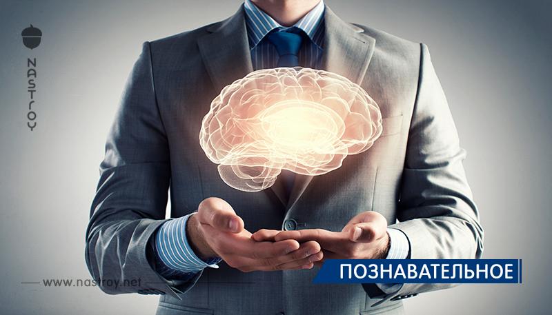 Привычки, восстанавливающие клетки мозга!