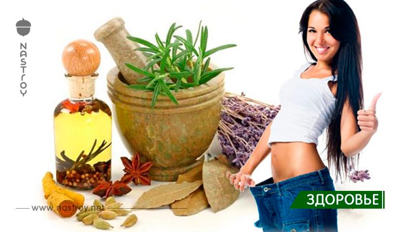 Похудеть На Травах Результаты. Похудение на травах - рецепты и применение. Эффективные способы сбросить лишний вес
