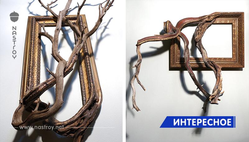 Художник дарит старым мёртвым ветвям вторую жизнь, превращая их в части рамок для картин!