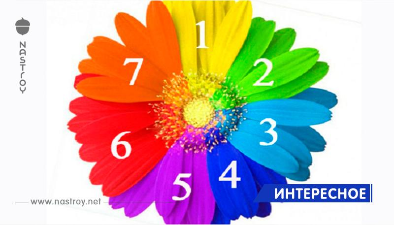 Выбранный лепесток Цветика-Семицветика расскажет какие будет вторая половина 2018 года!