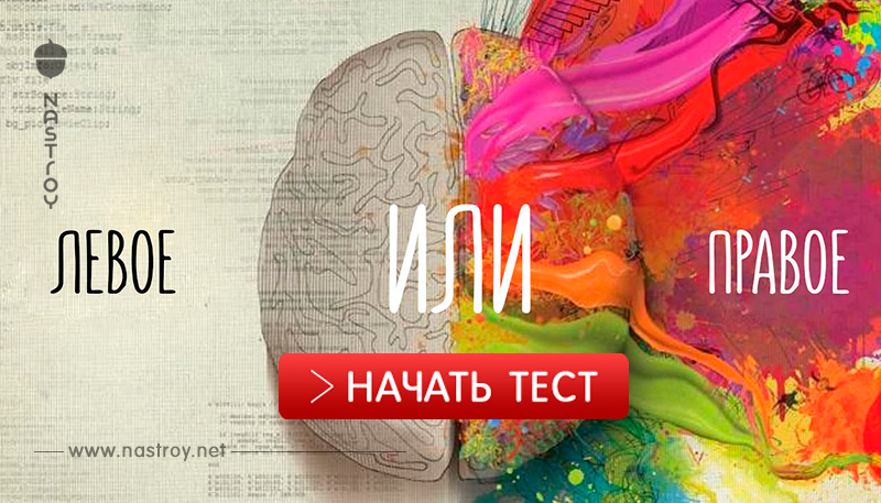 Тест: Что управляет вашей жизнью - разум или чувства!?