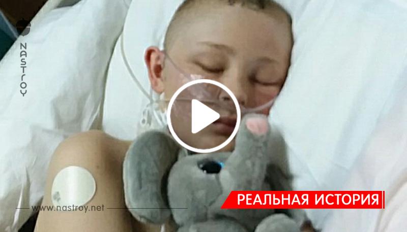 Родители согласились отдать органы «мёртвого» сына!