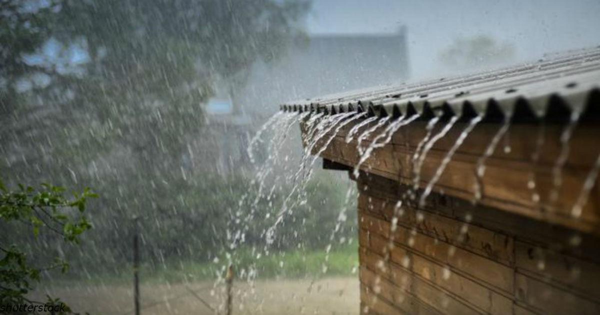 Бактерии и химикаты в дождевой воде убивают людей - и никто об этом не говорит!
