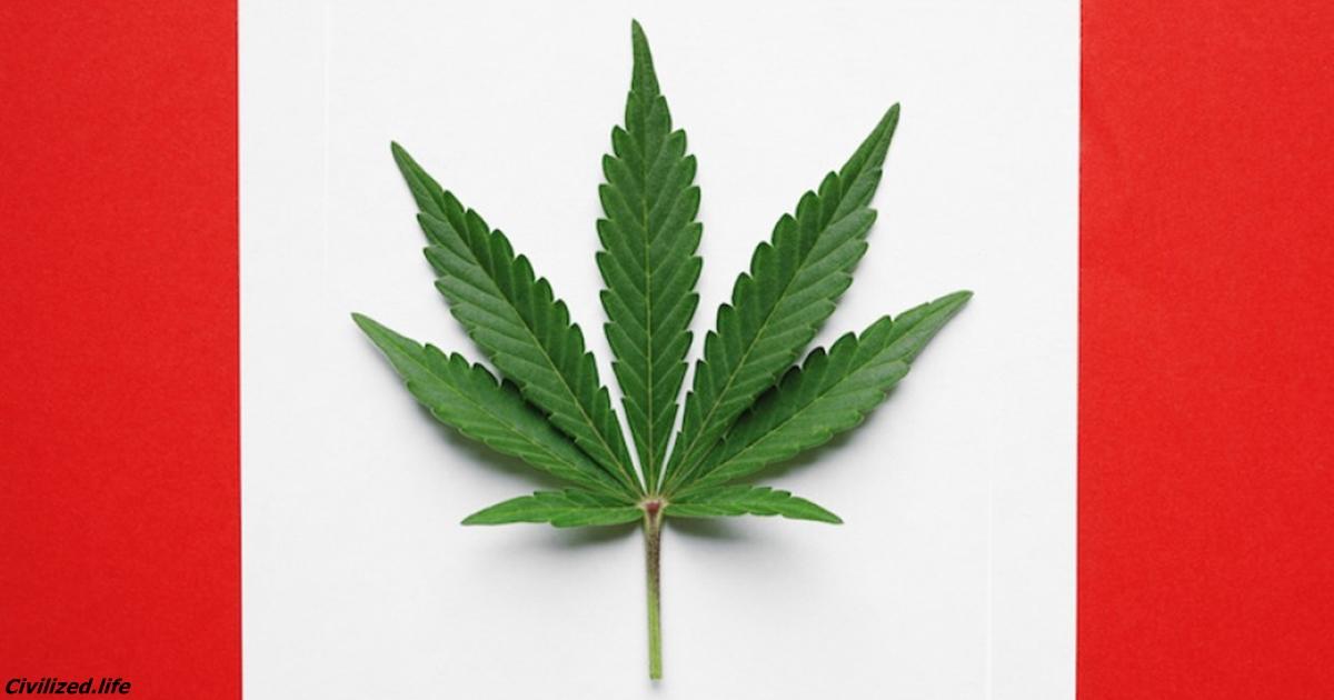 С сегодняшнего дня марихуана в Канаде абсолютно легальна