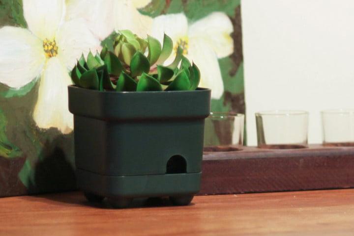 Вот как найти скрытую камеру в съемной квартире