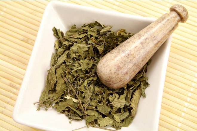 Сорняк от всех болезней: 10 важных причин есть листья крапивы