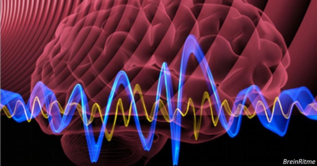 Наука доказала: магнитные поля действуют на клетки всего живого на Земле