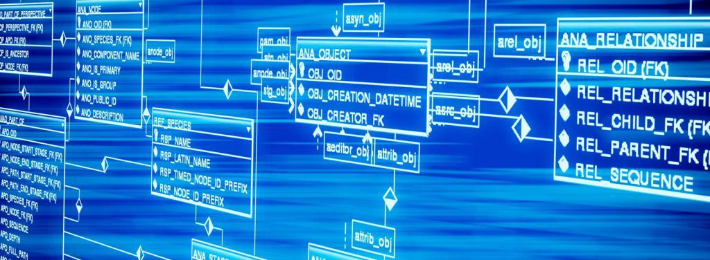 Какие бывают программы для создания баз данных