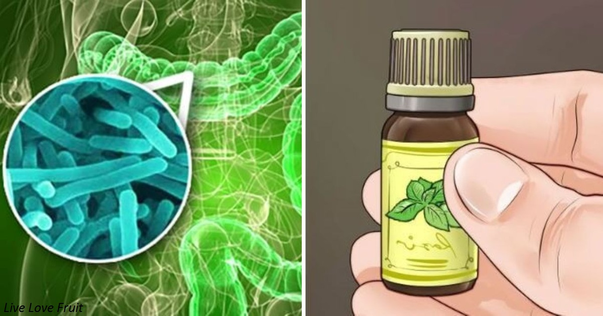 Эфирные масла – новые антибиотики против неуязвимых ″супербактерий″