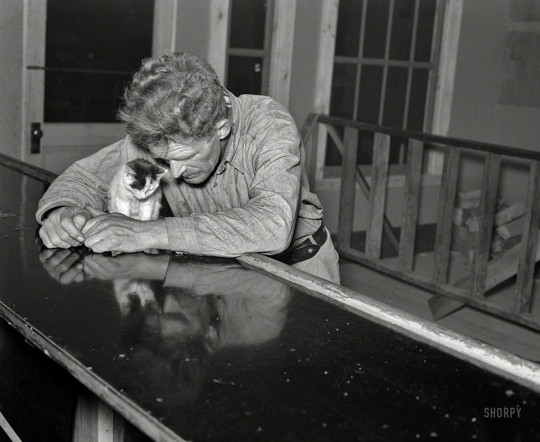 25 редких фото, которые объяснят вам, почему XX век был таким особенным
