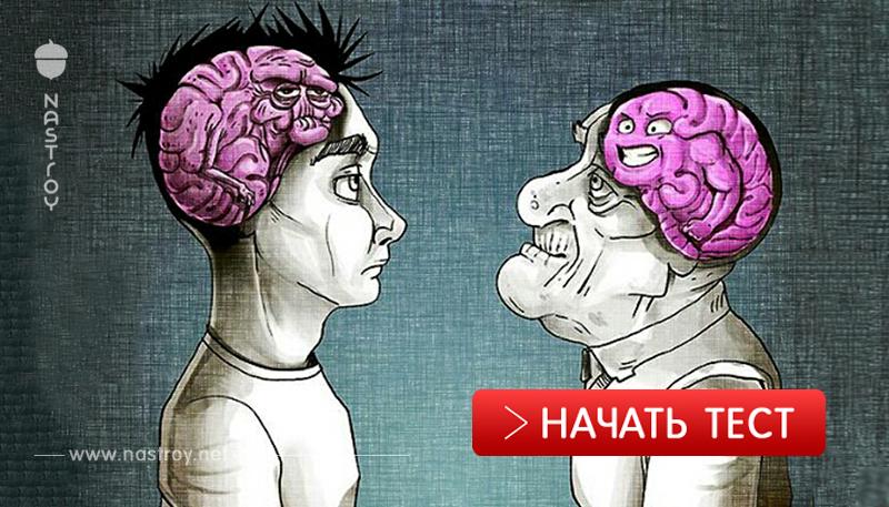 Tecт: ваш мозг — старик или ребёнок?