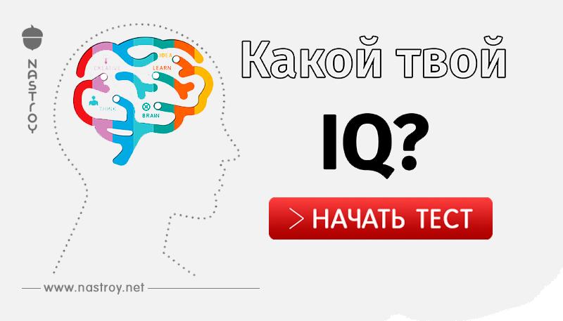 Как проверить уровень IQ!
