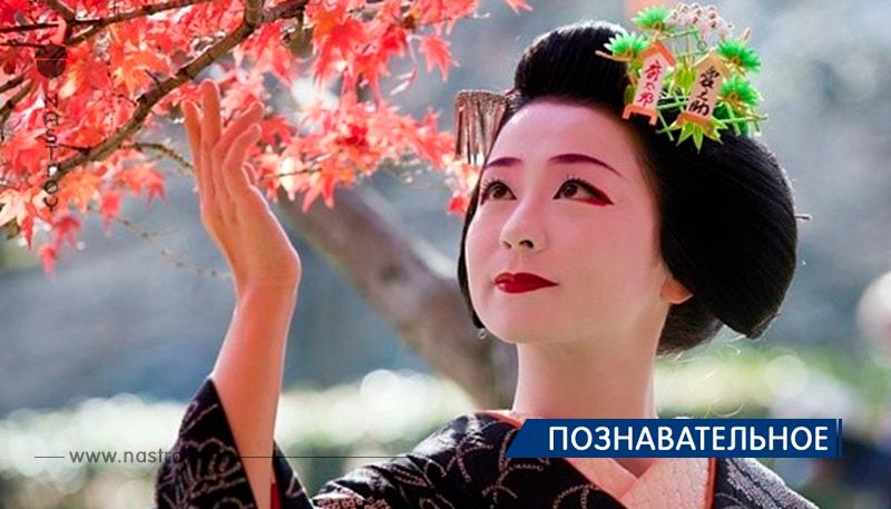 Мудрость японской культуры