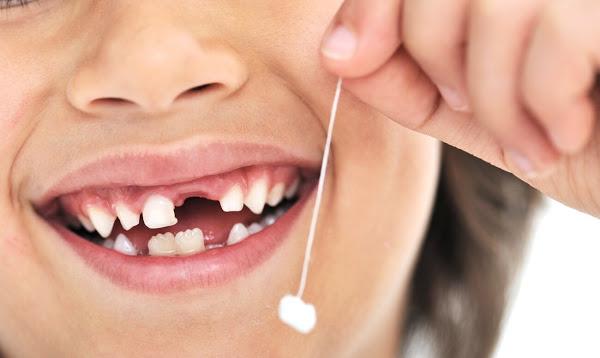 Если организму не хватает инсулина, тогда перестаньте выбрасывать молочные зубы!