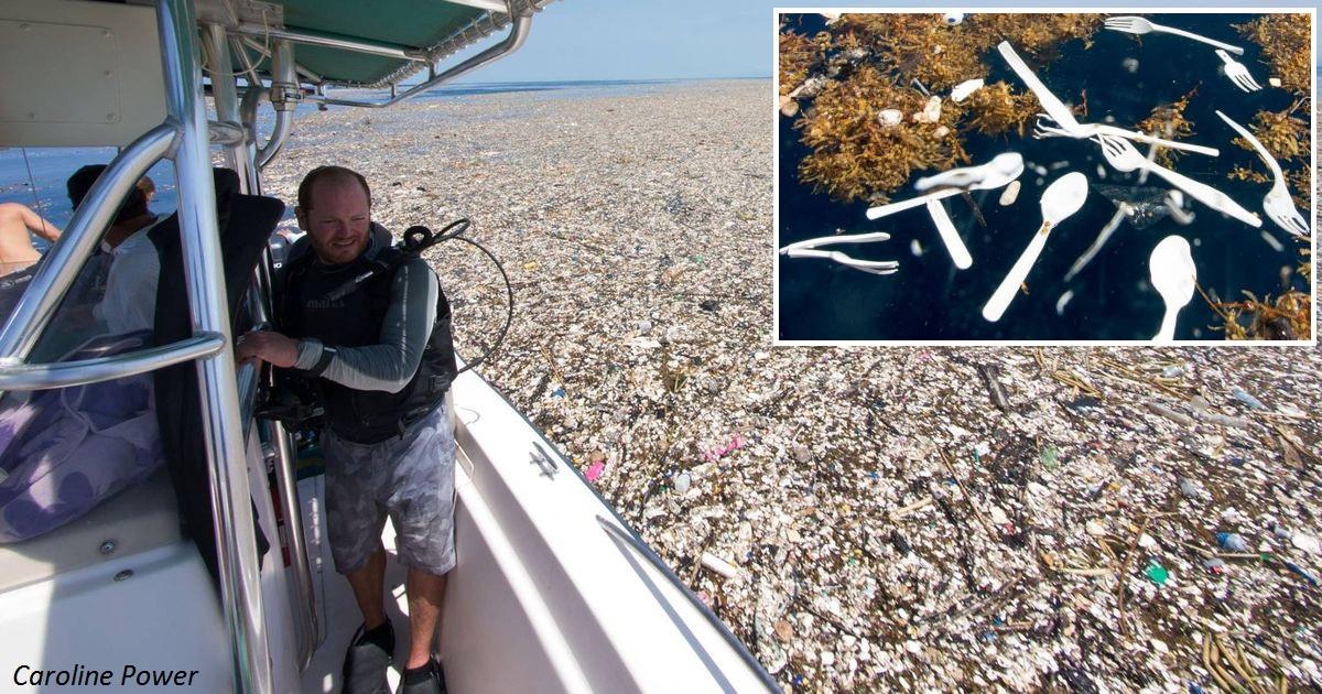 ″Пластиковый остров″ в Карибском море растянулся на 8 км. Тошнит уже от фото!