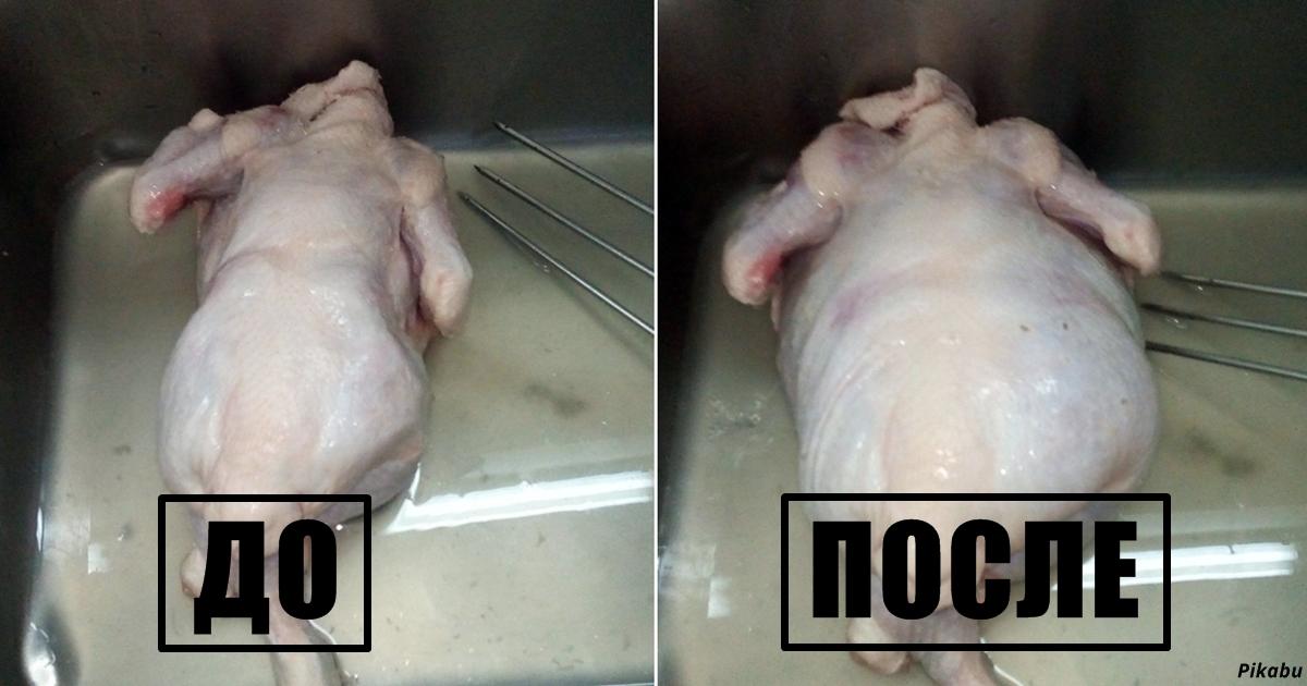 Работник магазина рассказал ужасную правду о том, как «накачивают» курицу