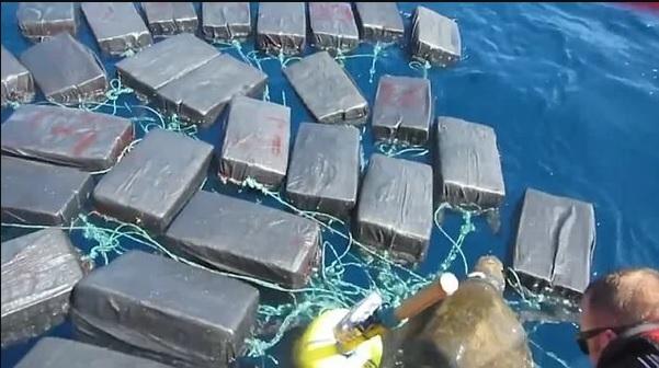 В США ″арестовали″ морскую черепаху, перевозящую 800 кг кокаина