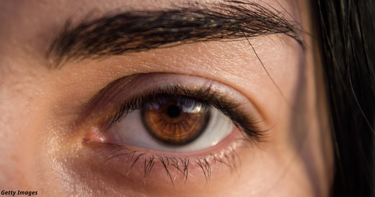 фото мужских карих глаз гарнитур можно углу