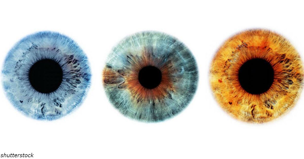 Вот что может рассказать о вас цвет ваших глаз