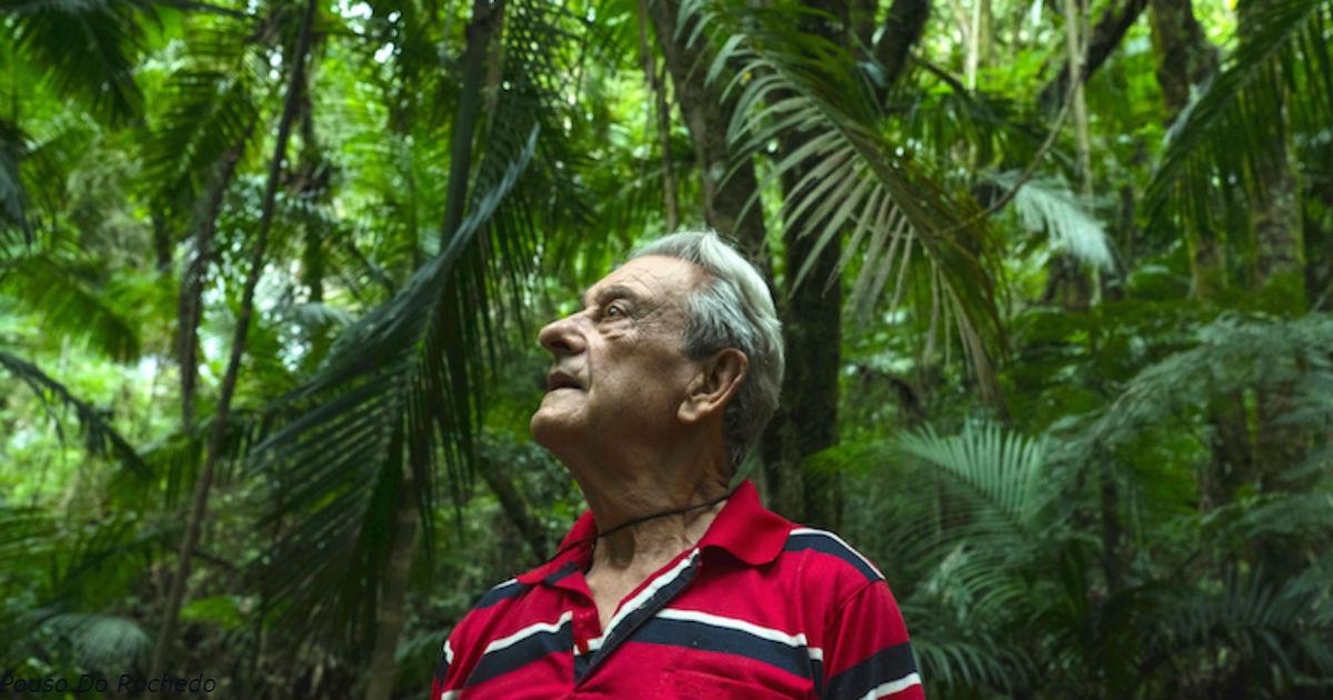 За 40 лет этот бразилец вырастил 31 га тропических лесов на пустом месте